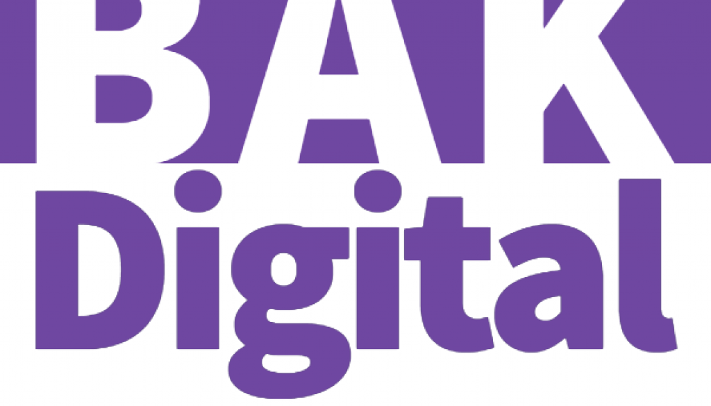 BAK Digital - SEO Purple