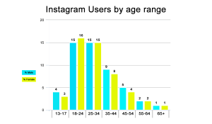 Instagram for business - users by age and sex